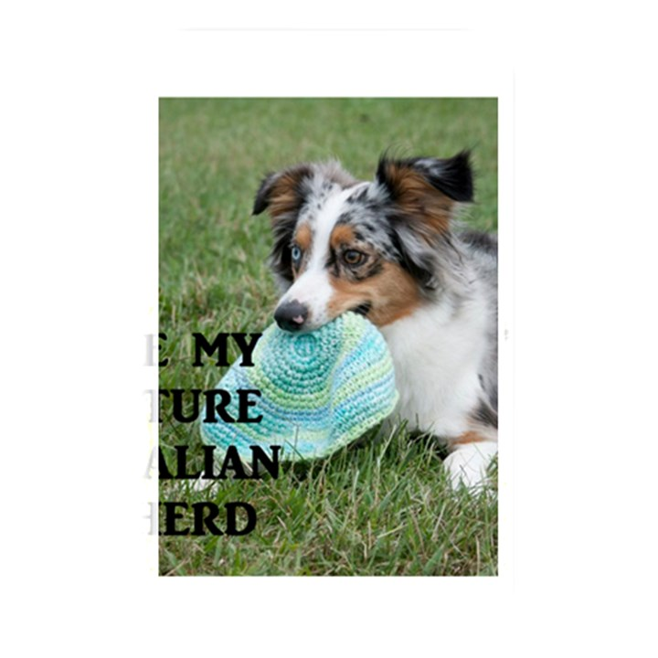 Blue Merle Miniature American Shepherd Love W Pic Memory Card Reader