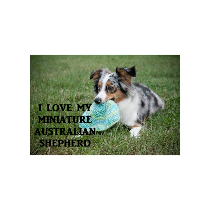 Blue Merle Miniature American Shepherd Love W Pic Birthday Cake 3D Greeting Card (7x5)