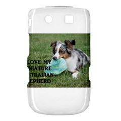 Blue Merle Miniature American Shepherd Love W Pic Torch 9800 9810