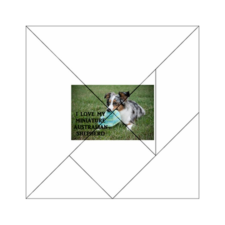 Blue Merle Miniature American Shepherd Love W Pic Acrylic Tangram Puzzle (6  x 6 )