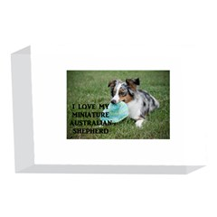 Blue Merle Miniature American Shepherd Love W Pic 4 x 6  Acrylic Photo Blocks