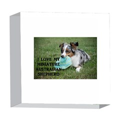 Blue Merle Miniature American Shepherd Love W Pic 5  x 5  Acrylic Photo Blocks