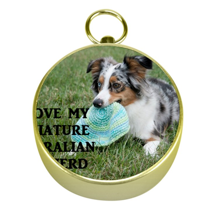 Blue Merle Miniature American Shepherd Love W Pic Gold Compasses
