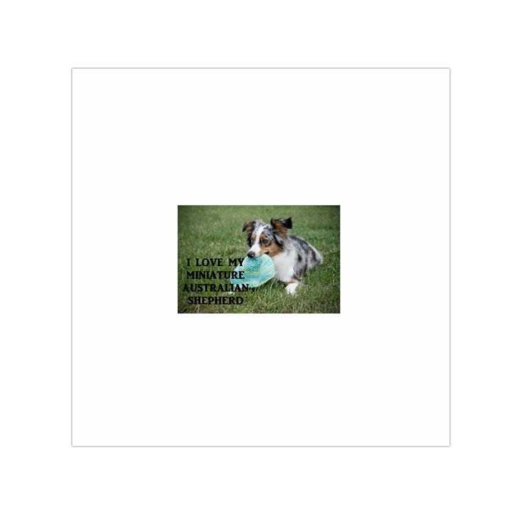 Blue Merle Miniature American Shepherd Love W Pic Small Satin Scarf (Square)