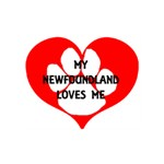 My Newfie Loves Me LOVE Bottom 3D Greeting Card (7x5) Back