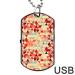 Modern Hipster Triangle Pattern Red Blue Beige Dog Tag USB Flash (Two Sides)  Back
