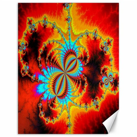 Crazy Mandelbrot Fractal Red Yellow Turquoise Canvas 12  x 16