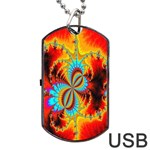 Crazy Mandelbrot Fractal Red Yellow Turquoise Dog Tag USB Flash (One Side) Front