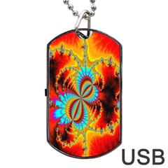 Crazy Mandelbrot Fractal Red Yellow Turquoise Dog Tag USB Flash (Two Sides)