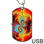 Crazy Mandelbrot Fractal Red Yellow Turquoise Dog Tag USB Flash (Two Sides)  Back