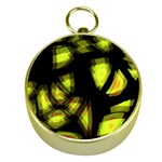 Yellow light Gold Compasses Front
