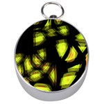 Yellow light Silver Compasses Front