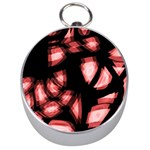 Red light Silver Compasses Front