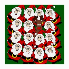 Did you see Rudolph? Medium Glasses Cloth