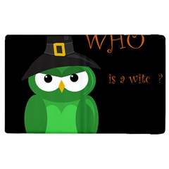 Who is a witch? - green Apple iPad 2 Flip Case