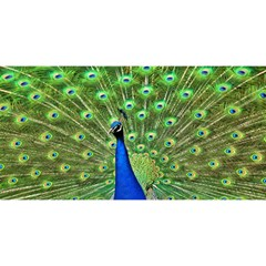 Bird Peacock YOU ARE INVITED 3D Greeting Card (8x4)
