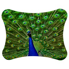 Bird Peacock Jigsaw Puzzle Photo Stand (bow)
