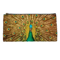 Bird Peacock Feathers Pencil Cases
