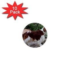 Welsh Springer Spaniel Full 1  Mini Magnet (10 pack)