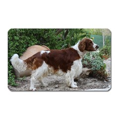 Welsh Springer Spaniel Full Magnet (Rectangular)