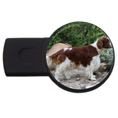 Welsh Springer Spaniel Full USB Flash Drive Round (1 GB)