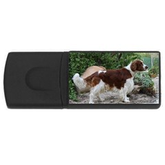 Welsh Springer Spaniel Full USB Flash Drive Rectangular (1 GB)