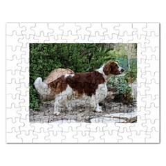 Welsh Springer Spaniel Full Rectangular Jigsaw Puzzl