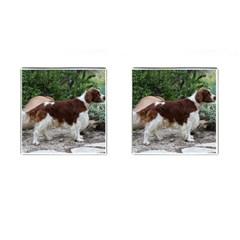 Welsh Springer Spaniel Full Cufflinks (Square)