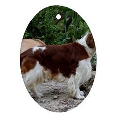 Welsh Springer Spaniel Full Oval Ornament (Two Sides)