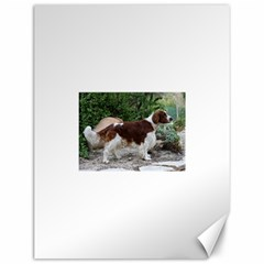 Welsh Springer Spaniel Full Canvas 12  x 16