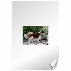 Welsh Springer Spaniel Full Canvas 12  x 18
