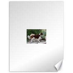 Welsh Springer Spaniel Full Canvas 18  x 24