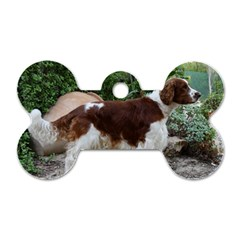 Welsh Springer Spaniel Full Dog Tag Bone (Two Sides)