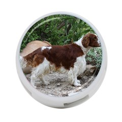 Welsh Springer Spaniel Full 4-Port USB Hub (Two Sides)