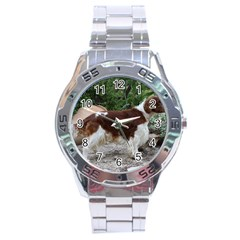 Welsh Springer Spaniel Full Stainless Steel Analogue Watch