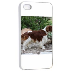Welsh Springer Spaniel Full Apple iPhone 4/4s Seamless Case (White)