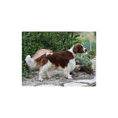 Welsh Springer Spaniel Full YOU ARE INVITED 3D Greeting Card (8x4)