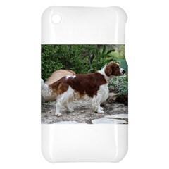 Welsh Springer Spaniel Full Apple iPhone 3G/3GS Hardshell Case
