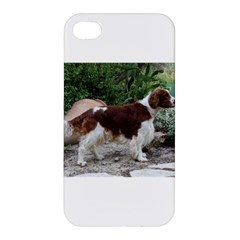 Welsh Springer Spaniel Full Apple iPhone 4/4S Hardshell Case