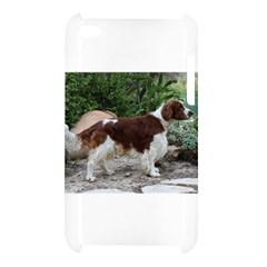 Welsh Springer Spaniel Full Apple iPod Touch 4