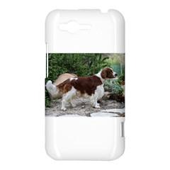 Welsh Springer Spaniel Full HTC Rhyme