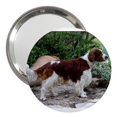 Welsh Springer Spaniel Full 3  Handbag Mirrors
