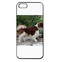 Welsh Springer Spaniel Full Apple iPhone 5 Seamless Case (Black)