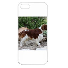 Welsh Springer Spaniel Full Apple iPhone 5 Seamless Case (White)