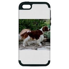 Welsh Springer Spaniel Full Apple iPhone 5 Hardshell Case (PC+Silicone)