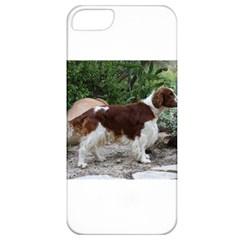 Welsh Springer Spaniel Full Apple iPhone 5 Classic Hardshell Case