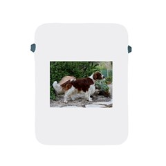 Welsh Springer Spaniel Full Apple iPad 2/3/4 Protective Soft Cases
