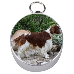 Welsh Springer Spaniel Full Silver Compasses