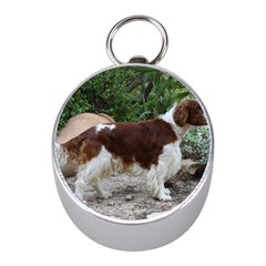 Welsh Springer Spaniel Full Mini Silver Compasses