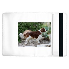 Welsh Springer Spaniel Full iPad Air Flip